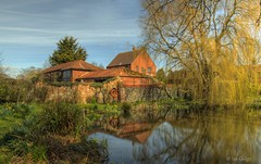 Somerleyton (Ian Gedge) Tags: uk england english water suffolk pond village britain eastanglia somerleyton 100commentgroup