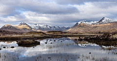Looking over Rannoch Moor (Damon Finlay) Tags: panorama black mountains landscape dawn islands scotland highlands nikon earlymorning scottish glen mount d750 glencoe wilderness moor tamron f28 coe rannochmoor rannoch scottishhighlands stob 2470 meall stobghabhar highlandsandislands blackmount odhair meallabhuiridh ghabhar stobachoireodhair creise achoire abhuiridh tamron2470f28 nikond750