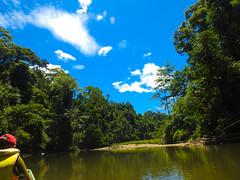 DSCN0556 (vhenryz) Tags: park trip trees sky cloud reflection nature water clouds forest river boat tour reserve calm national mangrove jungle vehicle guide brunei ulu temburong