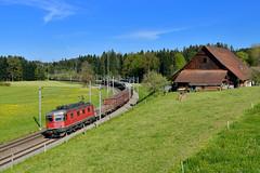 """Re 6/6 11635 """"SBB"""" Rothenburg (Matthias Greinwald) Tags: zug sbb cargo 66 re rothenburg bundesbahn gterzug 11635 schweizerische stahlzug"""