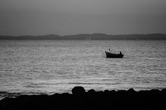 """Navegar  preciso."" ( monica silveira | fotografia) Tags: branco mar barco preto e baa barquinho embarcao nikond7000 barcoeomar nikkorpb"