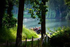 a view to a kill (Daan Heijnen) Tags: fiets fahrrad bike lake water meer tree bankje view summer spring