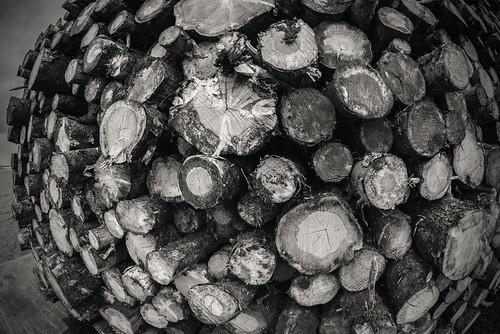 Log pile.....