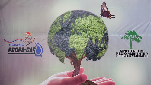 Gobierno reafirma compromiso; celebra Día Mundial del Medio Ambiente