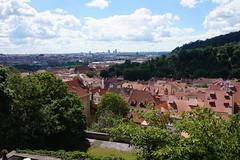 2016.06.18-DSC06910 (martin_kalfatovic) Tags: castle prague praskhrad praguecastle 2016