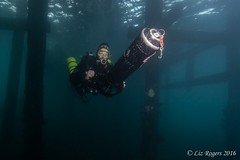 Scooter practise under Flinders Pier (Liz_Rogers) Tags: ocean expedition photography pier underwater image diving cave reef flinders preparation nullarbor featured
