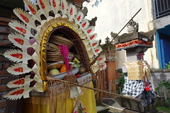 DSC00205 (Peripatete) Tags: family bali nature festival fruit prayer religion ceremony hindu ubud offerings galungan penjor