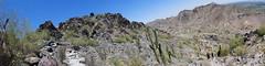 Piestewa Peak Park AZ (artistwhite) Tags: arizona cactus mountain phoenix hiking trail overlooking