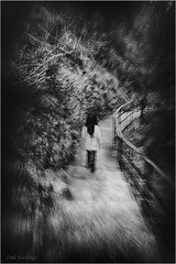 Indagando en su angustia (Jos Santiago [Fotografia Creativa]) Tags: josesantiago josansaru fotografiacreativa nikonistas nikon d90 movimiento mooving camino escaleras barandilla arbol maleza oscuridad luz broto huesca pirineos