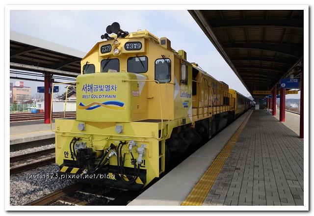 금빛열차18