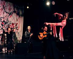 Kuge10 (Instituto Cervantes de Tokio) Tags: music art dance concert gallery arte dancing guitar live danza concierto guitarra galeria livemusic exhibition msica baile flamenco vivo institutocervantes directo  exposicin     flamencodancing guitarraflamenca  exhibicin flamencoguitar  msicaenvivo  msicaendirecto baileflamenco