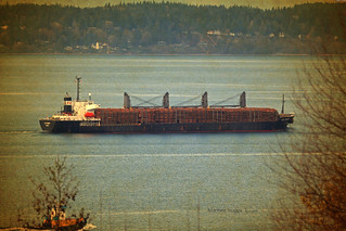 1738_Leo Forest and Tug Westrac