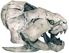 Dunkleosteus (Davidjwilson) Tags: ohio art digital ink belt acrylic drawing editorial beast journalism devonian davidwilson dunkleosteus mattstansberry