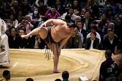 Sumo in Osaka-42 (Rodrigo Ramirez Photography) Tags: japan amazing traditional professional tournament osaka sumo yokozuna ozeki makuuchi hakuho sumotori sumotournament maegashira reikishi harumafuji topdivision