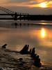 IMG_3156 (andyyoung37) Tags: runcorn runcornbridge wiggisland