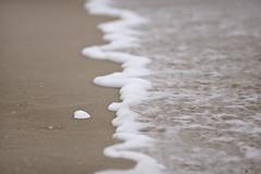 Espuma de mar (Ali Llop) Tags: sea beach mar sand agua playa arena olas océano espumademar
