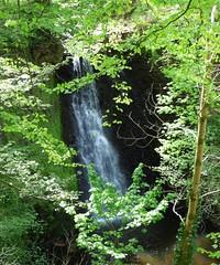 Falling Foss (Martellotower) Tags: waterfall yorkshire north falling foss