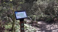 20160331_095133 (ks_bluechip) Tags: creek evans trails preserve sammamish usa2106