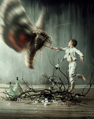 Battle of the Giant Moth (Gabriel Tomoiaga) Tags: flowers boy portrait white art fight interior branches fineart rustic moth surreal battle knight mold conceptual fineartphotography