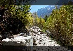 Stand still, O Beautiful End, for a moment, and say your last words in silence (koushikzworld) Tags: mountain nature trekking photography fuji indian sony himalayas ganga gangotri gomukh carlzeiss shivling bhagirathi uttarakhand gaumukh koushikzworld koushikbanerjee