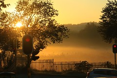 a touch of mist at the robots (peet-astn) Tags: autumn trees red mist yellow fence dawn lights alba robots nebbia