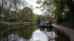 (Alex Ho Photography) Tags: london regentscanal   columbiaroadflowermarket   ricohgr2 nienyihophotography