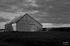 Grange 3 (Denis Hbert) Tags: shadow summer blackandwhite bw canada black monochrome clouds barn rural blackwhite woods shadows noiretblanc quebec country ngc nb ombre qubec porte t nuages campagne extrieur blanc grange bois montrgie shadowy richelieu vgtation 2015 ombrage newtopographics aot newtopographic newtopographer summer2015 denishbert anthropogeo t2015