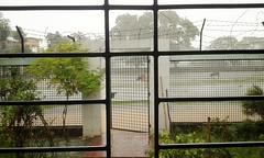 Locked in Rain (mazedmaruph) Tags: sky cloud nature water field rain natural raining locked