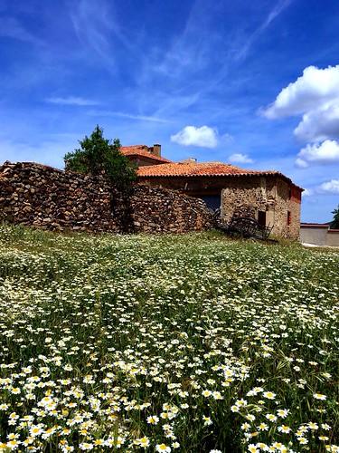Bádenas. Teruel.