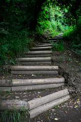 Round Wales Walk 37 - Climbing Again! (Nikki & Tom) Tags: uk wales track path ceredigion tresaith walescoastpath roundwaleswalk