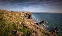 Armeria Maritima (Nickerzzzzz - Thanks for stopping by :)) Tags: sunset sea sky cloud colour water rock canon landscape coast sand cornwall break horizon wave thrift photograph nationaltrust plumbaginaceae kernow bedruthan seapink armeriamaritima bedruthansteps steval 5dmkiii 5d3 1635mmf4lisusm nickudy