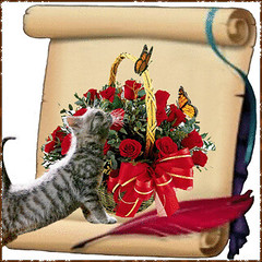 """""""Kitty cats love to watch butterflies."""" (martian cat) Tags: flowers friends dog pets flower nature sepia cat butterfly bug insect frame gif allrightsreserved sepiatoned allrightsreserved martiancatinjapan allrightsreserved scrollframe martiancatinjapan martiancatinjapan allrightsreserved martiancatinjapan"""