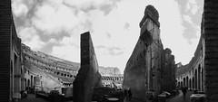 il colosseo piraneseano (**) Tags: rome roma italia italy italie ruins ruinas rovine colosseo coliseu coliseum piranesi pb pretoebranco people pessoas persons gente bw bn biancoenero blackandwhite