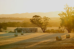 Sunrise (explored) (Valley Imagery) Tags: sandycreeek barossavalley sunrisesandycreek farm hay stubble ruin abandoned stone south australia sunrise summer