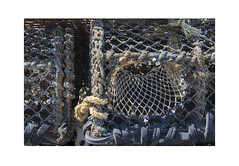 Lobster Pot (Detail) (Pictures from the Ghost Garden) Tags: nikon d7100 dslr 18105mm unitedkingdom uk wales ceredigion newquay coast coastal seaside harbours lobster pot lobsterpot rope net netting