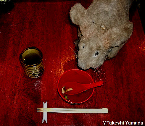 Dr. Takeshi Yamada and Seara (sea rabbit) enjoying dinner at Sake Japanese Restaurant in Brooklyn, New York. This is one of their favorite restaurants in New York City. Clear Soup. 20141008 12 082=Cdarker=2