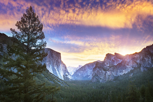 Awakening Yosemite