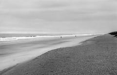 Beach (Alexander Tkachev) Tags: blackandwhite film beach monochrome darkroom landscape coast blackwhite florida outdoor d76 shore handheld 4x5 largeformat tmx400 crowngraphicspecial