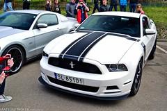 Ford Mustang GT Boss 302 (Mateusz Woek) Tags: boss cars ford chevrolet car focus nissan parking fast 7 camaro 427 bmw premiere mustang gt a4 audi katowice lamborghini rs avant 44 furious 302 gallardo punkt kato gtr nismo roush premiera fastfurious szybcy wciekli