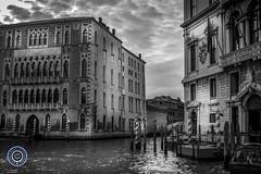 Venice. Grand Canal. (DSC01394) (Michael N Hayes) Tags: venice campanile gondola murano venezia stmarkssquare