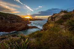 509A3171- Fishermans Bay, sunrise (Gil Feb 11) Tags: australia newsouthwales annabay
