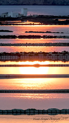 _3150231 (V. Ferragut) Tags: color sol azul atardecer mar agua olympus salinas ibiza reflejo eivissa puesta naranja estanques ferragut