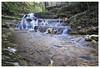 Newborn River (Pasha_KRD) Tags: travel vacation holiday green art nature topf25 water rock forest canon river photo waterfall russia 100v10f 7d lanscape krasnodar kuban