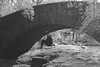Central Park (pinhead1769) Tags: bridge newyork blancoynegro book blackwhite centralpark manhattan read bwdreams