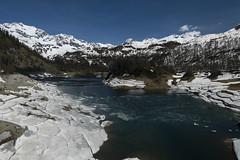 Lago del Devero 2 (Ciak88) Tags: panorama mountain snow alps verde primavera ice nature water lago spring nikon natura neve niko acqua alpi montagna mou ghiaccio devero alpedevero d5300