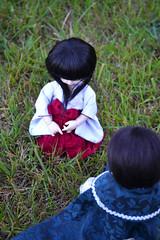 110 (ruppychan) Tags: ball dark doll 14 chibi des elf bjd soo sarang fairyland joint desu littlefee