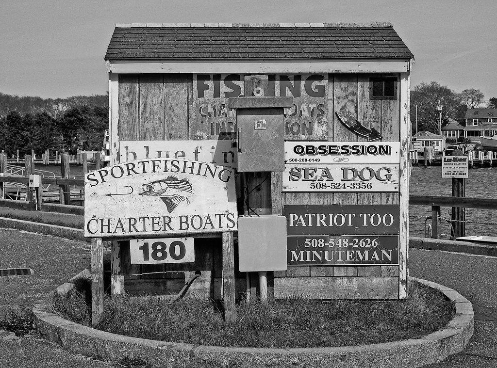 The world 39 s most recently posted photos of dock and for Fishing charters falmouth ma