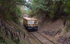Walker (Dobpics O'Brien) Tags: diesel rail railway healesville railcar walker valley yarra 22rm