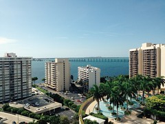 City view (chloejadeyoung) Tags: city morning travel family trees sea summer vacation sky usa sun holiday hot green nature water pool america buildings landscape outdoors photography still student warm break florida miami branches sunny palm abroad heat tropical humid 2015