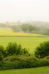Vom Scheersberg (Manuel Eumann) Tags: nature landscape nikon natur mai landschaft schleswigholstein d610 manueleumann